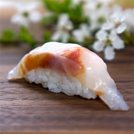 Nigiri brancin Tai 鯛