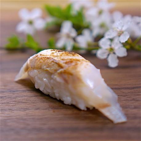 Nigiri brancin Aburi 炙り寿司